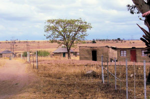 Houses in Chieveley S. Africa